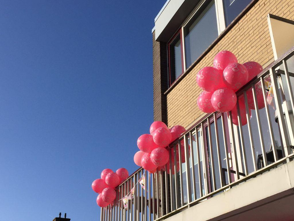 De Ballonnenkoning - trossen ballonnen - roze bedrukking