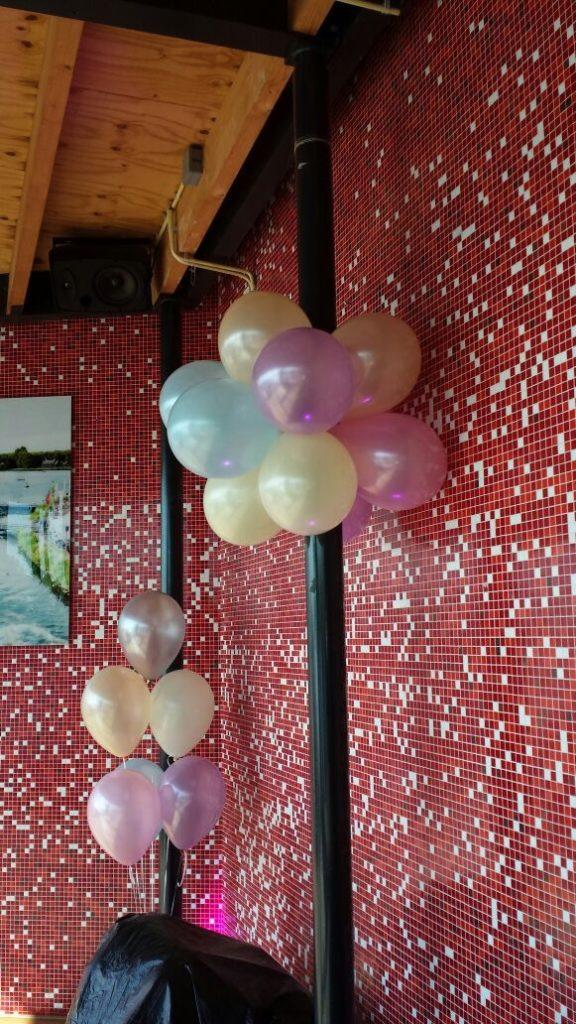 De Ballonnenkoning-de tuin rotterdam-ballontrossen