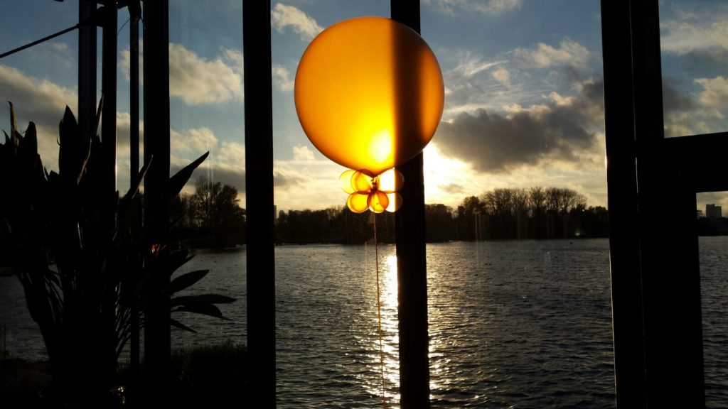 De Ballonnenkoning-de tuin rotterdam-topballonnen zonlicht