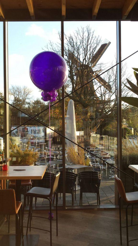 De Ballonnenkoning-de tuin rotterdam-topballonnen zonlicht paars